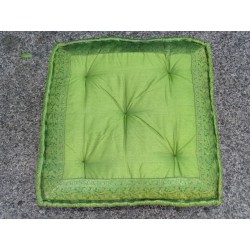 Cushion of Floor light green brocade edges